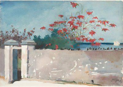 A wall, Nassau - Winslow Homer (1898)