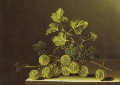 Branche de groseilles - Adriaen Coorte (1705)