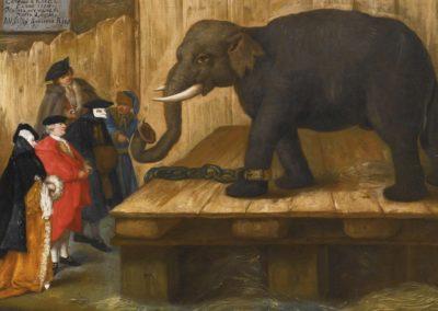 Elephant - Pietro Longhi (1770)