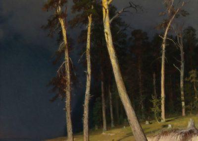 La cote sableuse - Ivan Ivanovich Shishkin (1879)