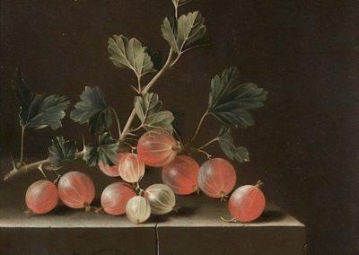 Nature morte aux groseilles - Adriaen Coorte (1701)