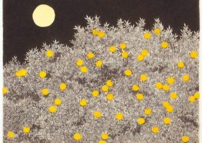 Night - Ryohei Tanaka (1972)