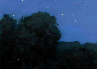 Nocturne starry night - Thomas Torak (2002)