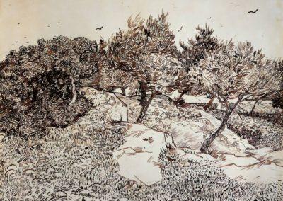 Oliviers a Montmajour - Vincent Van Gogh (1888)