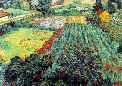 Champ de pavots - Vincent van Gogh (1889)