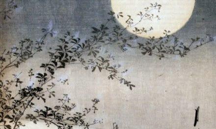 Le miel inaltérable – Marguerite Yourcenar