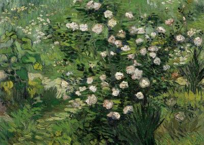 Roses fleuries - Vincent van Gogh (1889)