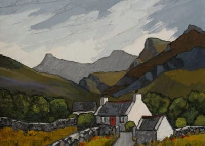 In the pennant valley - David Barnes (2007)