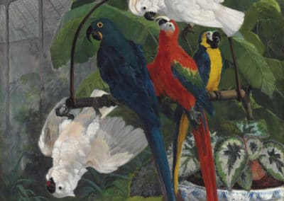 Parrots in a tropical glasshouse - Filippo Palizzi (1879)