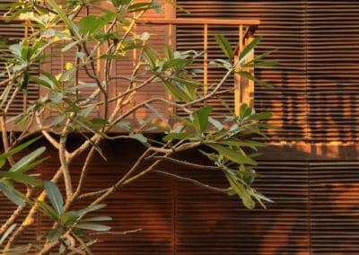 Palmyra house - Studio Mumbai 2007 (24)