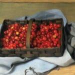 Les cerises – Nérée Beauchemin