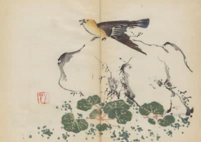 Shi zhu zhai zhai shu hua hua pu – Hu Zhengyan 1633 (12)