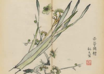 Shi zhu zhai zhai shu hua hua pu – Hu Zhengyan 1633 (23)