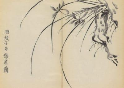 Shi zhu zhai zhai shu hua hua pu – Hu Zhengyan 1633 (43)