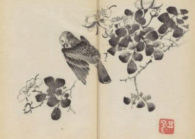 Shi zhu zhai zhai shu hua hua pu – Hu Zhengyan 1633 (5)