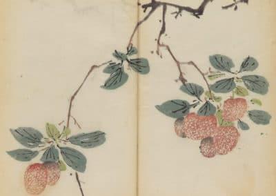 Shi zhu zhai zhai shu hua hua pu – Hu Zhengyan 1633 (67)