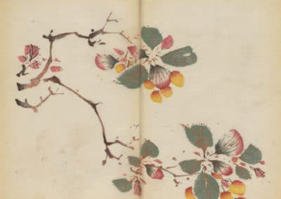 Shi zhu zhai zhai shu hua hua pu – Hu Zhengyan 1633 (73)