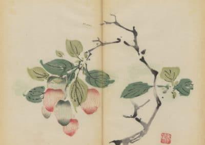 Shi zhu zhai zhai shu hua hua pu – Hu Zhengyan 1633 (74)