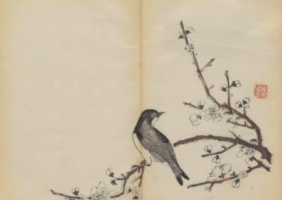 Shi zhu zhai zhai shu hua hua pu – Hu Zhengyan 1633 (75)