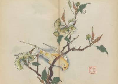 Shi zhu zhai zhai shu hua hua pu – Hu Zhengyan 1633 (8)