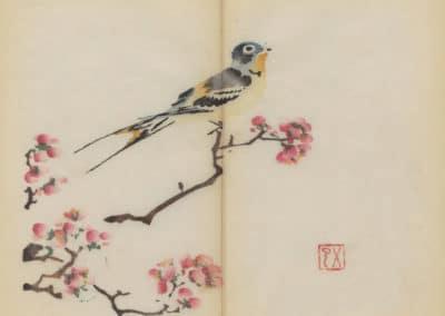 Shi zhu zhai zhai shu hua hua pu – Hu Zhengyan 1633 (81)