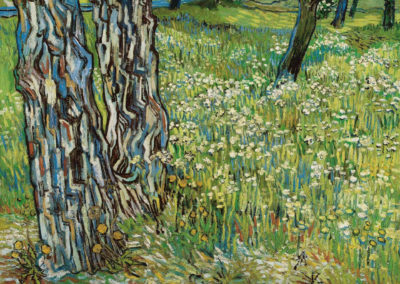 Tree trunks in the grass - Vincent van Gogh (1890)