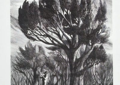 Fantasy - Joseph Mugnaini 1950 (1)
