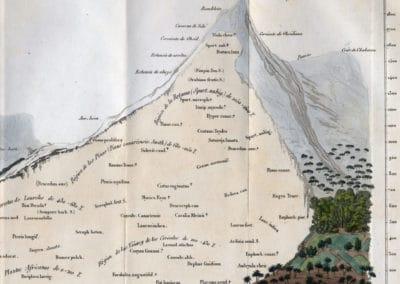 L'invention de la nature - Alexander von Humboldt 1830 (3)