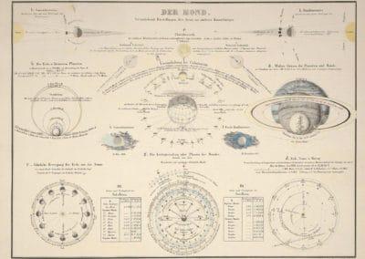 L'invention de la nature - Alexander von Humboldt 1830 (36)