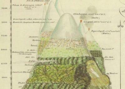 L'invention de la nature - Alexander von Humboldt 1830 (44)