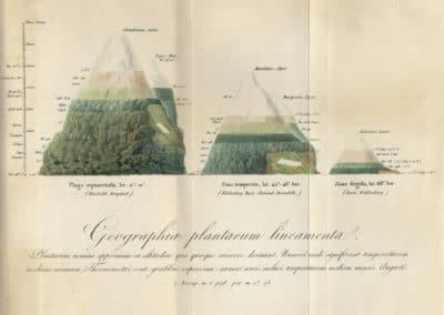 L'invention de la nature - Alexander von Humboldt 1830 (45)