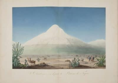 L'invention de la nature - Alexander von Humboldt 1830 (49)