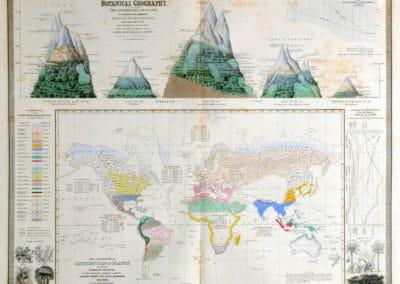 L'invention de la nature - Alexander von Humboldt 1830 (51)