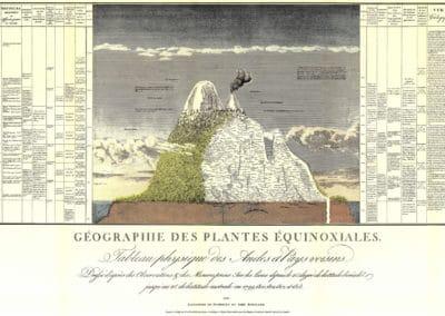 L'invention de la nature - Alexander von Humboldt 1830 (59)