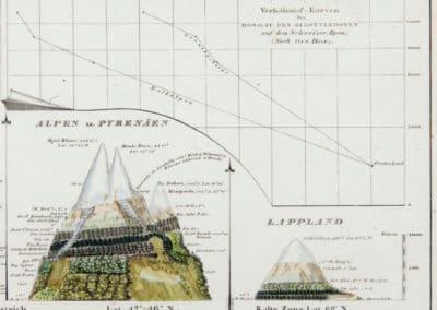 L'invention de la nature - Alexander von Humboldt 1830 (8)