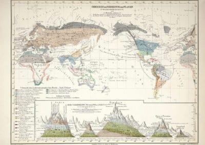 L'invention de la nature - Alexander von Humboldt 1830 (9)