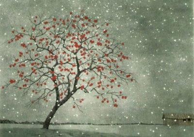 Persimmon in Snow - Ryohei Tanaka (2004)
