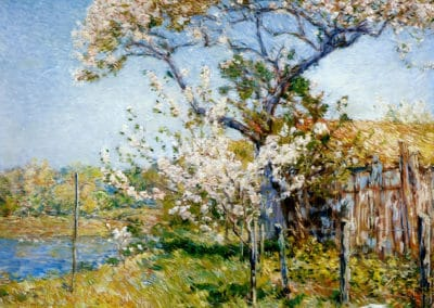 Apple trees in bloom, old lyme - Childe Hassam (1901)