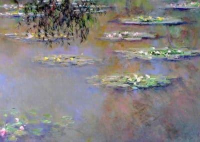 Les nymphéas - Claude Monet (1903)