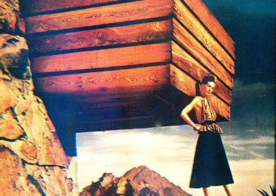 Rose Pauson House - Frank Lloyd Wright 1939 (17)