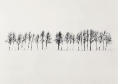 Hokkaido - Michael Kenna 2004 (1)