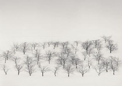 Hokkaido - Michael Kenna 2004 (2)