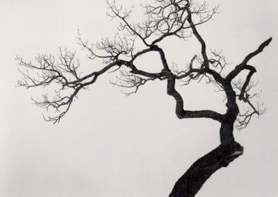 Hokkaido - Michael Kenna 2004 (24)
