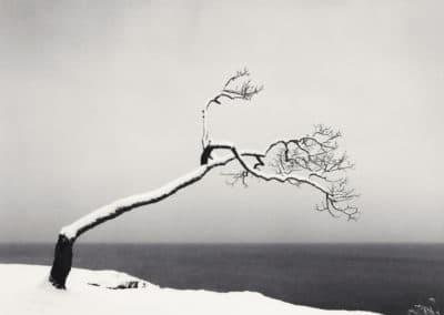 Hokkaido - Michael Kenna 2004 (7)