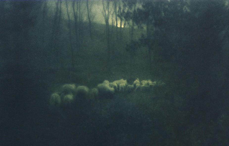 Enigmatic – Edward Steichen