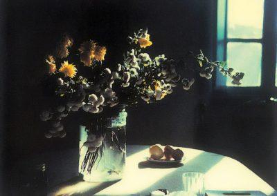 Mystery of everyday life - Andrei-Tarkovsky 1979 (17)