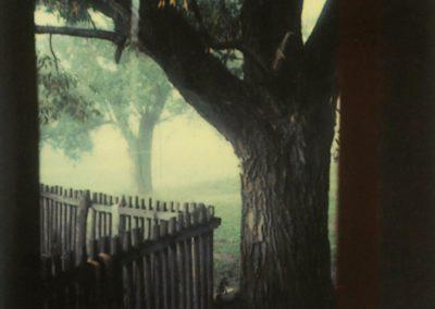 Mystery of everyday life - Andrei-Tarkovsky 1979 (7)