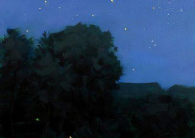 Nocturne starry night - Thomas Torak (2002)