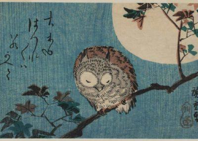 Small horned owl on maple branch under full moon - Utagawa Hiroshige (1856)