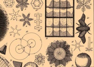 Encyclopédie Brockhaus et Efron 1890 (26)
